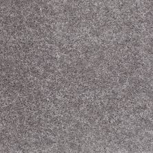 Shaw Floors Shaw Flooring Gallery Burtonville Silhouette 00500_5293G
