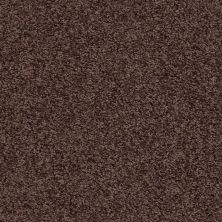 Shaw Floors Shaw Flooring Gallery Burtonville Urban Legend 00714_5293G