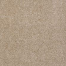 Shaw Floors Hawkeye II Old Leather 00150_52A35