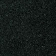 Shaw Floors Hawkeye II Firtree 00311_52A35