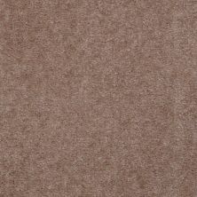 Shaw Floors Hawkeye II Warm Mink 00703_52A35