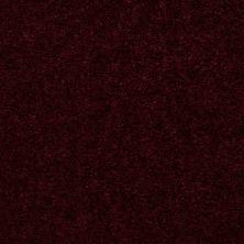Shaw Floors Hawkeye II Wineberry 00811_52A35