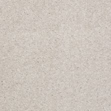 Shaw Floors Shaw Floor Studio Textured Collection Lilac 00101_52B69