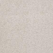 Shaw Floors Shaw Floor Studio Textured Collection Lilac 00101_52B69