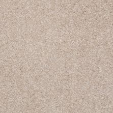 Shaw Floors Shaw Floor Studio Textured Collection Utterly Beige 00106_52B69