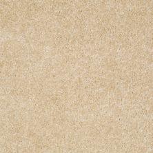 Shaw Floors Shaw Floor Studio Textured Collection Toasted Coconut 00108_52B69