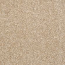 Shaw Floors Shaw Floor Studio Textured Collection Saw Dust 00701_52B69