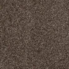 Shaw Floors Shaw Floor Studio Textured Collection Kodiak Brown 00709_52B69