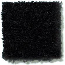 Shaw Floors Shaw Floor Studio Textured Story 15 Coal Black 55502_52B76