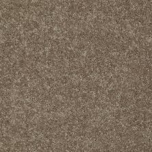 Shaw Floors Shaw Floor Studio Textured Story 15 Driftwood 55720_52B76