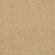 Shaw Floors This Is It Evening Beige 00104_52E51