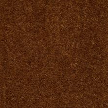 Shaw Floors This Is It Brown Sugar 00700_52E51