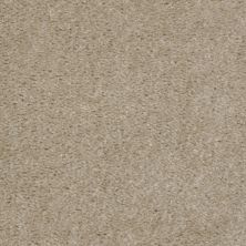 Shaw Floors SFA Flashy Zamara Sand 00109_52E55