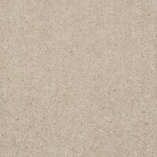 Shaw Floors SFA Flashy Quiet Beige 00114_52E55