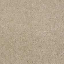 Shaw Floors SFA Flashy Earth Beige 00118_52E55