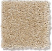 Shaw Floors SFA Flashy Ermine Fur 00153_52E55