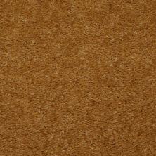 Shaw Floors SFA Flashy Golden Tint 00200_52E55