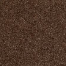 Shaw Floors SFA Flashy Spare Brown 00704_52E55