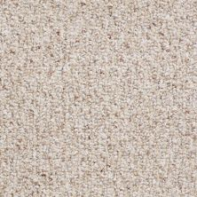 Shaw Floors Pure Waters 15 Sisal Weave 00200_52H11
