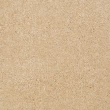 Shaw Floors This Is It Plus Softly Beige 00152_52N08