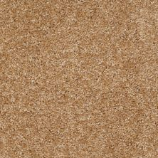 Shaw Floors Full Of Life Sisal 00101_52N09