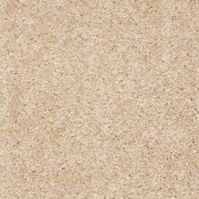 Shaw Floors SFA Kentfield Chic Ivory 00107_52N22