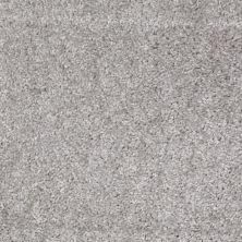 Shaw Floors SFA Kentfield Sterling 00500_52N22