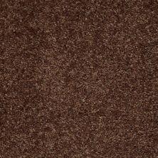 Shaw Floors SFA Kentfield Fresh Coffee 00704_52N22