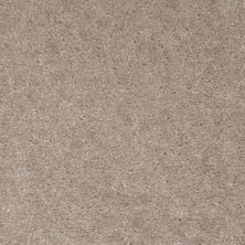 Shaw Floors SFA Arvin Desert Breeze 00116_52N23