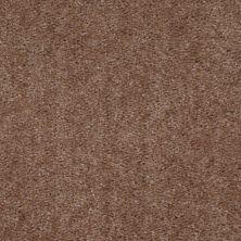 Shaw Floors SFA Arvin Falcon Crest 00131_52N23