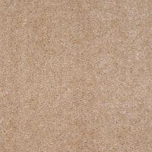Shaw Floors SFA Arvin Biscuit 00143_52N23