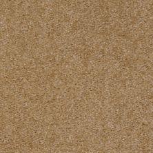 Shaw Floors SFA Arvin Wheat Field 00160_52N23