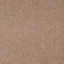 Shaw Floors SFA Arvin Adobe 00701_52N23