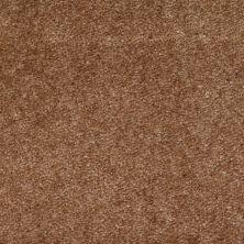 Shaw Floors SFA Arvin Baked Apple 00713_52N23
