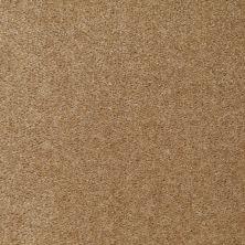 Shaw Floors SFA Arvin Mink 00720_52N23