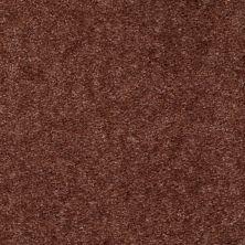Shaw Floors SFA Arvin Dried Clay 00757_52N23