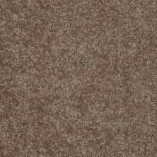 Shaw Floors Essay II 15′ Owl 00791_52N89