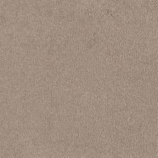 Shaw Floors Everyday Comfort (s) Pebble Beige 00114_52P07