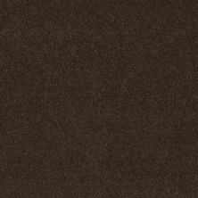 Shaw Floors Everyday Comfort (s) Brown Sugar 00708_52P07