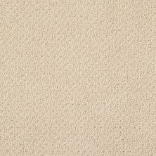 Shaw Floors Traditional Elegance Honeycomb 00211_52P13