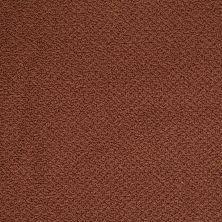 Shaw Floors Traditional Elegance Magic Lantern 00601_52P13