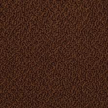 Shaw Floors Traditional Elegance Fudge 00707_52P13