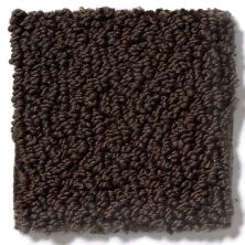 Shaw Floors Traditional Elegance Brown Sugar 00708_52P13