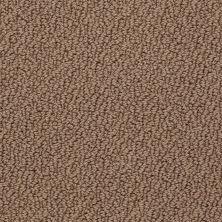 Shaw Floors Traditional Elegance Autumn Shade 00710_52P13