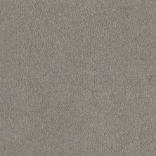Shaw Floors Shaw Floor Studio Before Dawn (s) Antique Pewter 00510_52P67