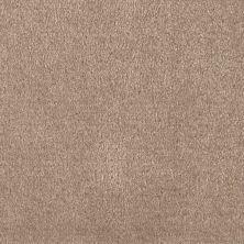 Shaw Floors Optimum Thornwood 00747_52Q59