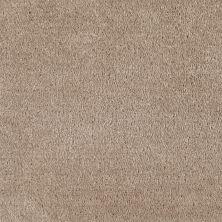 Shaw Floors Optimum Rockport 00751_52Q59