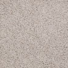 Shaw Floors Striker Pebble 00102_52R36