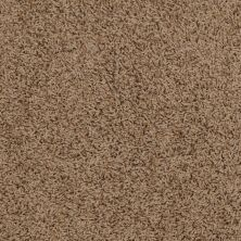 Shaw Floors Striker Antique 00203_52R36
