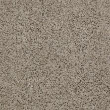 Shaw Floors Striker River Rock 00300_52R36